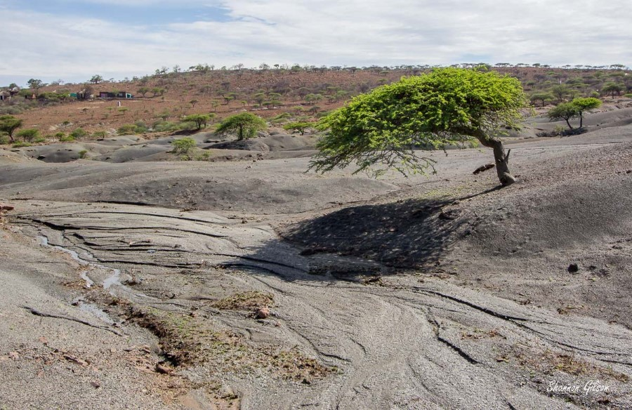 drought in Msinga 3